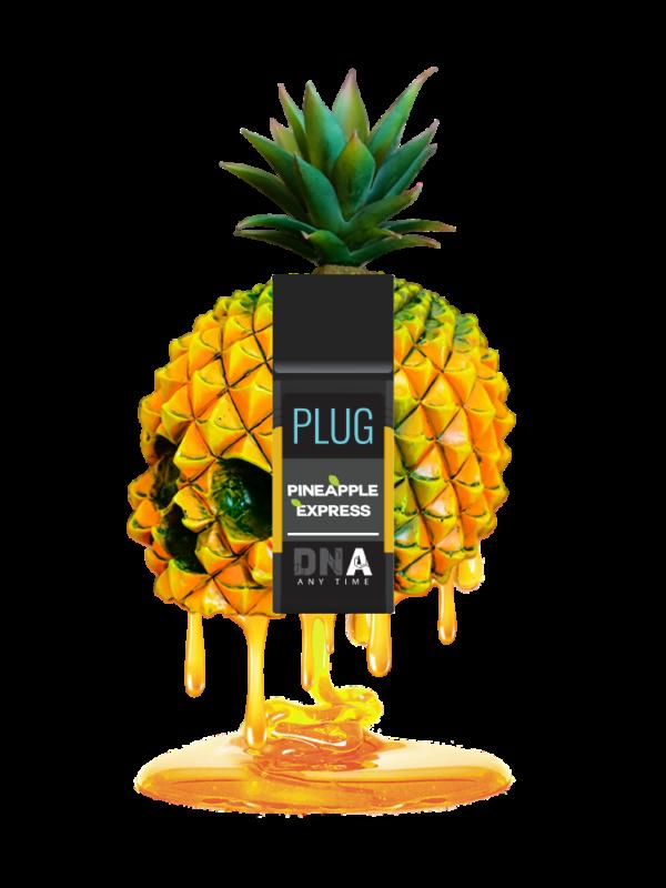 Plug n Play exotics