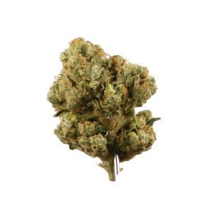 sour diesel strain